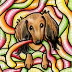 """""""Doxie In Candy Worms"""" by KiniArt"""