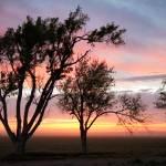"""Kansas Farmstead Sunrise"" by RyanShepard"