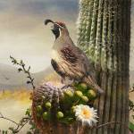 """desert tableau- singing quail"" by rchristophervest"