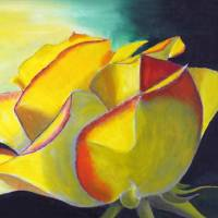 """Solitary Rose"" by Rossana Kelton"