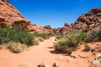Beautiful Horizon - Valley of Fire