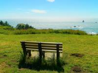 The Soothing Bench With A View