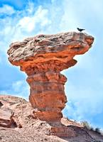 Camel Rock and Bird NM
