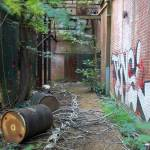 """""""Abandoned Historic NC Mill"""" by SAPhoto"""