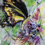 """Expressive Black Butterfly"" by GinetteCallaway"