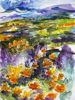 Abstract California Poppies Expressive Watercolor