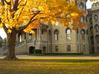 Fall Leaves at Notre Dame