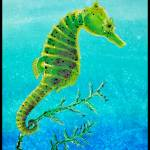 """Green Seahorse"" by Littlepig"