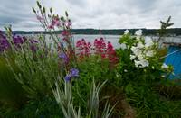 20140525 Poulsbo / Bainbridge Island (10 of 27)