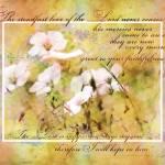 """""""Steadfast Love"""" by lizmix"""