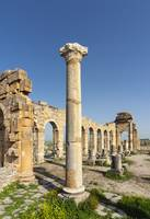 Ruined Basilica at Volubilis, Morocco