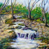 Ferndell Creek Noon Art Prints & Posters by Randy Sprout