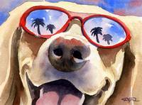 Labrador Retriever Sunglasses