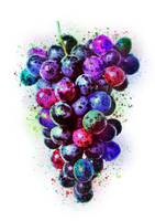 Galactic Grapes
