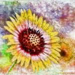 """Floral Rainbow Fun"" by DBenoit"