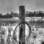 """""""Pole with Barbed Wire. (01666)"""" by Fotofrieze"""