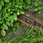 """""""Hidden Rail"""" by jeffwatts"""