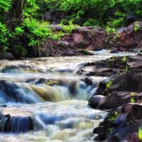 Creek by Lisa Rich