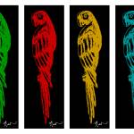"""""Parrot sketch set of four in color"" Original Artw"" by meganduncanson"