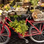 """""""Market Bicycle"""" by raetucker"""