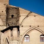 """Bologna Duomo"" by raetucker"