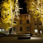 """Giardini di Piazza Minghetti"" by raetucker"