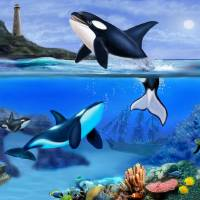 C:\fakepath\THE ORCA FAMILY Art Prints & Posters by Glenn Holbrook