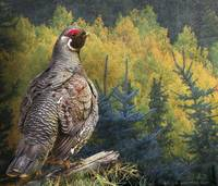 spruce grouse northern maine
