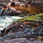 """""""Mossy Creek"""" by LJdesigns"""