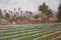 Camarillo Strawberry Fields