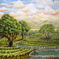 Santa Ynez Valley Vineyard Art Prints & Posters by Consuelo Yznaga-Davis