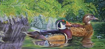 Bayou Wood Ducks