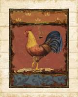 Rooster Portraits VI