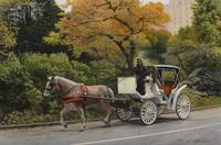 Carriage At Central Park