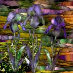 """Three Irises"" by artlicensing"