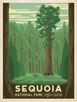 Sequoia National Park Retro Travel Poster