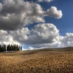 """Tuscany III"" by artlicensing"