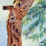 """Giraffe"" by artlicensing"