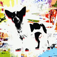 Abstract Pet Pop Art Animals Colorful