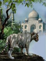 Guardien of the Taj Mahal new
