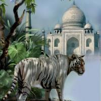 Guardien of the Taj Mahal new Art Prints & Posters by Gina Femrite