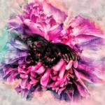 """""""Butterfly Landing"""" by LJdesigns"""