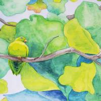 Costa Rica Parrot Art Prints & Posters by Michelle Bocklage
