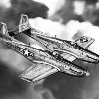F-82 Twin Mustang Art Prints & Posters by Douglas Castleman