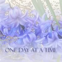 One Day at a Time Hyacinths
