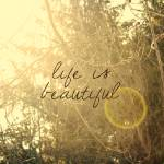 """""""Life Is Beautiful"""" by sweetblue"""