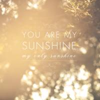 you are my sunshine Art Prints & Posters by sandra arduini