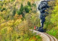 Cass Scenic Railroad Spruce Mountain