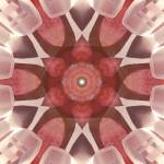 """Strawberry Light Lemurian Crystal Mandala"" by SeaAngel12"