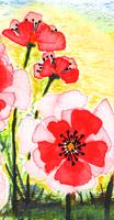 Expressive Wild Red Pink & Yellow Poppy Field w3b